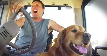 'Farm Dog' - Farmer's Hilarious Parody Will Get Stuck In Your Head