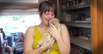 Boyfriend Surprises Girlfriend With New Puppy After Family Pet Passes Away