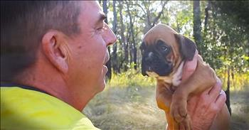 Firefighter's Relationship With Abandoned Dog Will Leave You In TEARS!