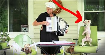 Pup Dancing To This Granny's Accordion Will Make You Smile