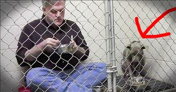 Doctor Eats In Kennel With Starving Dog