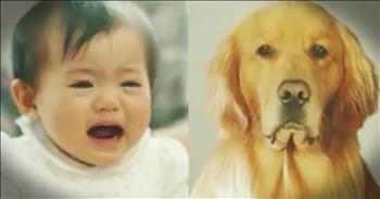 Scared Baby Learns To Love Family Dog In The Sweetest Way