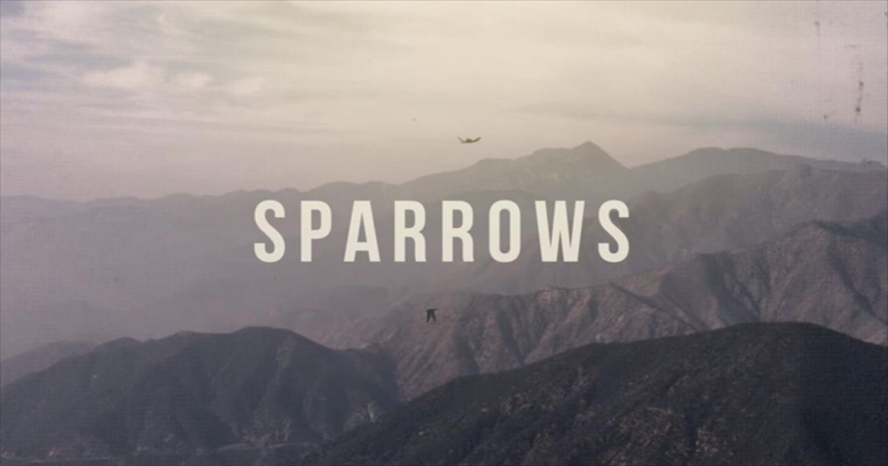 Jason Gray - Sparrows