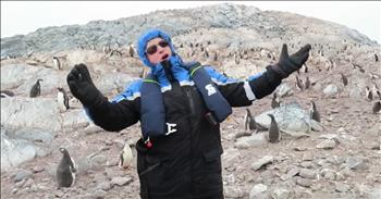 Penguins Have Funny Reaction To Opera Singer