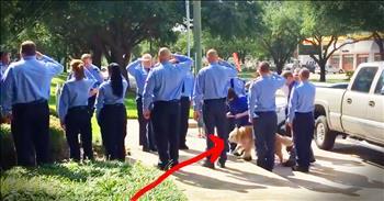 9/11 Hero Dog Gets A Touching Goodbye