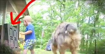 Family Dog Saves 18-Month-Old From Snake Bite