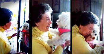Grandma Has Sweet Reaction To Her Surprise Puppy