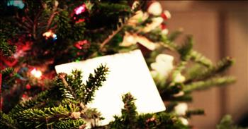 White Envelope On A Christmas Tree Changes A Man's Heart
