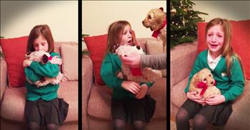 Little Girl Gets Surprise Puppy For Christmas