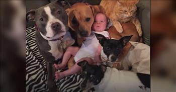 Lucky Baby Completely Surrounded By Furry Love