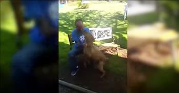 Dog Recognizes Owner After Losing Weight