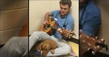 Vet Plays Sweet Song For Pup Going Into Surgery