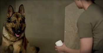 'Megan Leavey' - Movie Trailer Of Marine And Her Life-Saving Dog