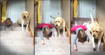 Funny Girl Teaches Dog To Get Down Stairs