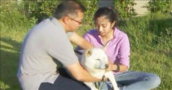 Good Samaritan Rescues Dog From Coyotes