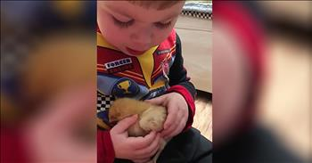 Toddler Sings Baby Chick To Sleep