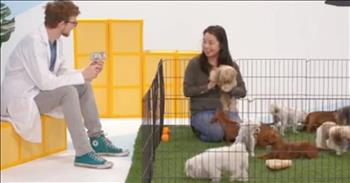 Adorable Puppies Teach Lesson On Generosity