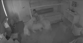 Security Cam Shows Dogs Helping Toddler Escape