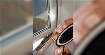 Footage Shows Dangers Of Mirror During Extreme Heat
