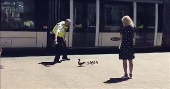 Friendly Cop Helps Mama And Ducklings Cross Busy Street