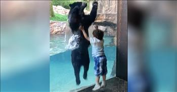 Boy And Bear Have Jumping Contest At The Zoo