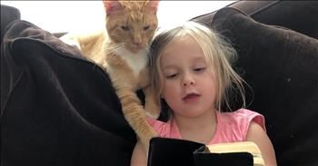 Little Girl Reads Unique Bible Story To Cat
