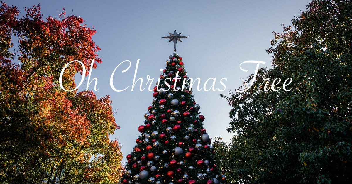 Oh Christmas Tree (O Tannenbaum) - Lyrics, Hymn Meaning and Story