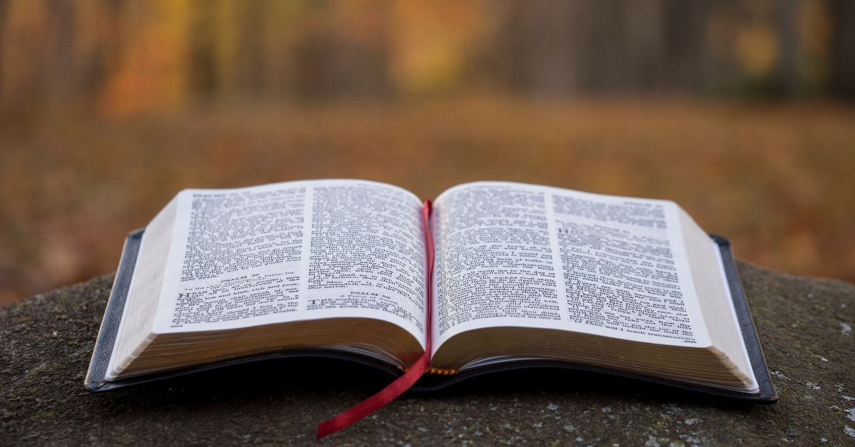 Bible Publishers Experience Increased Sales amid COVID-19 Pandemic