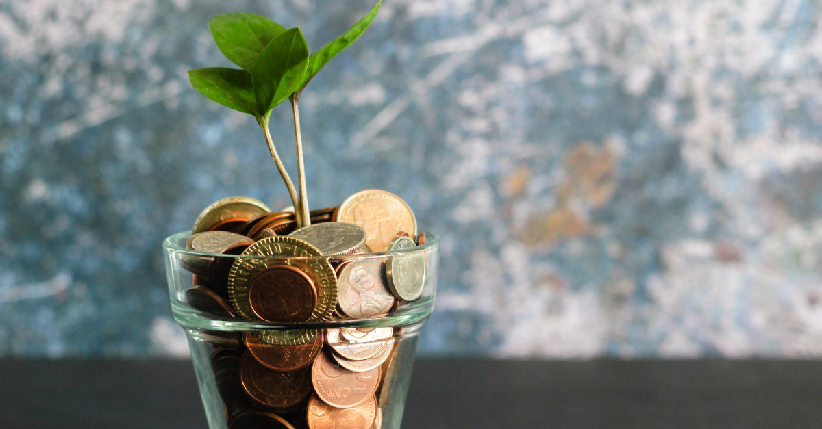 sprout growing from jar of coins giving