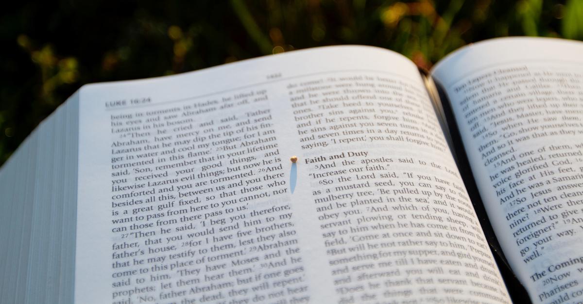 8 importante mini lecciones de Jesús en el libro de Lucas 12