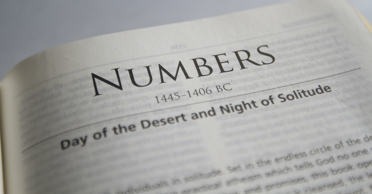 Bible open to Book of Numbers, Numbers summary