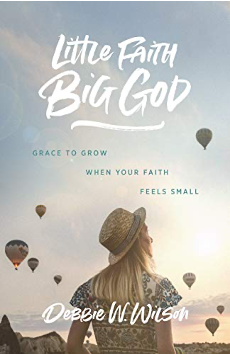 Little Faith Big God arise book cover