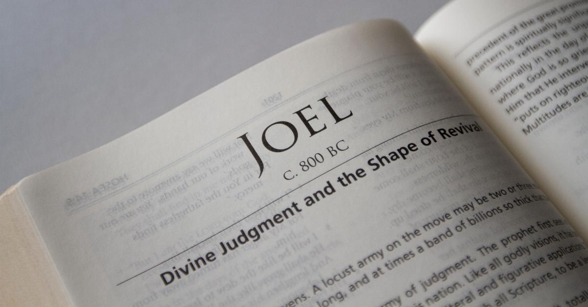 joel summary, book of joel,