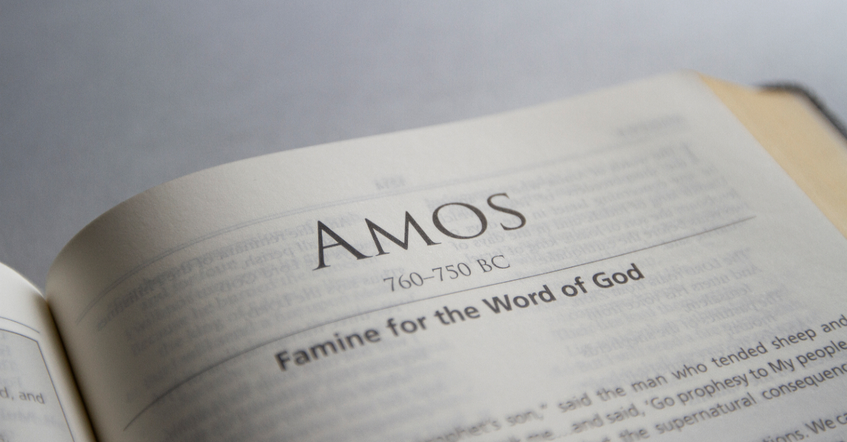 amos, book of amos, amos summary