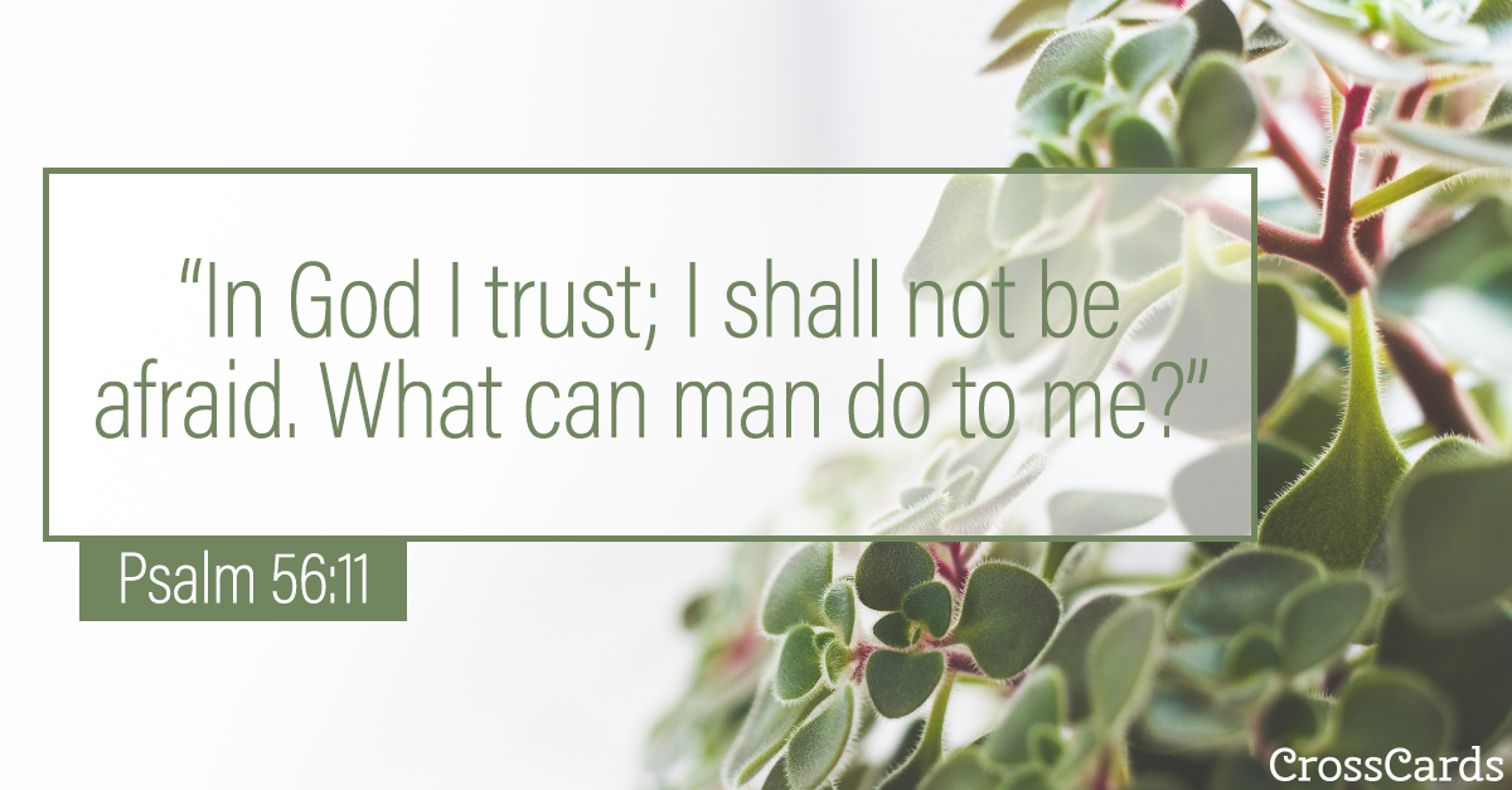 Psalm 56:11 ecard, online card