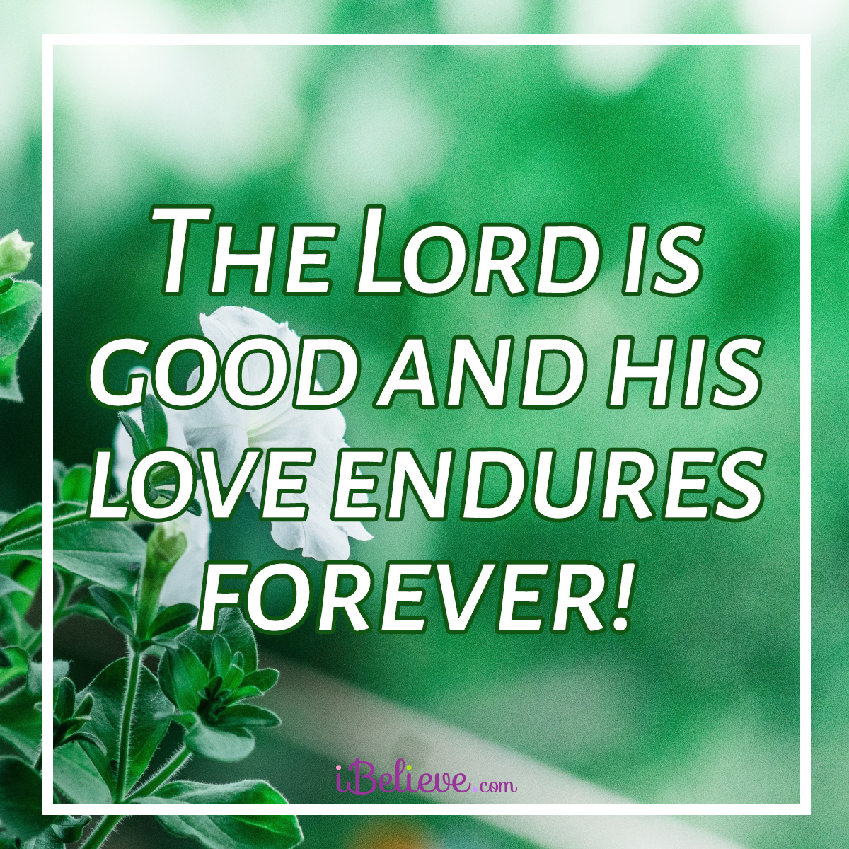 his love endures forever square