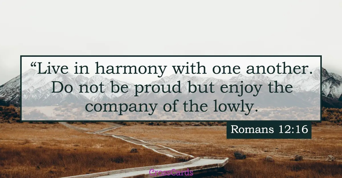 Your Daily Verse - Romans 12:16