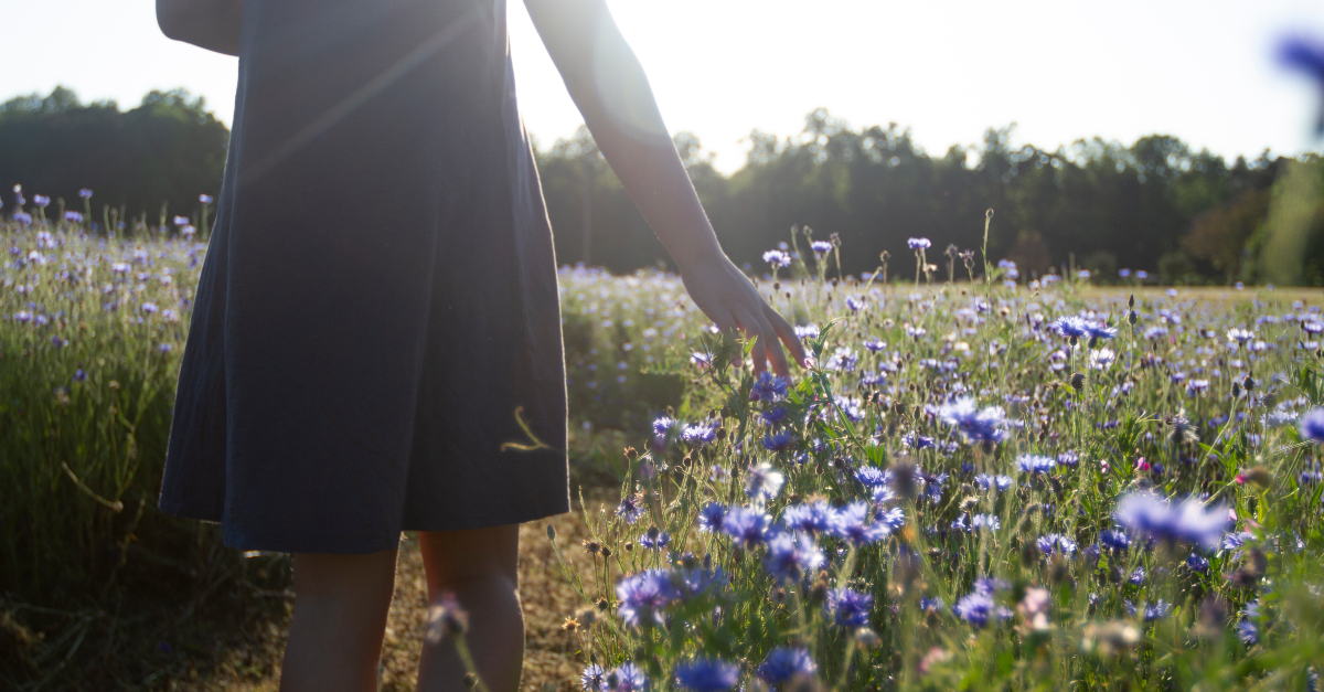 woman walking through field of lavender wildflowers in sunlight
