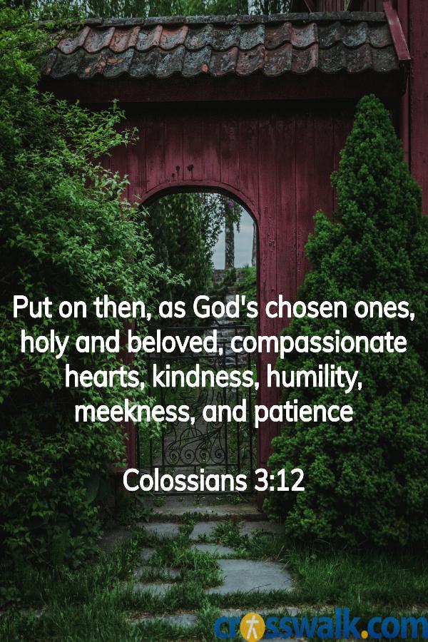 versículos de la biblia para la paciencia, colosenses 3:12, escrituras sobre la paciencia