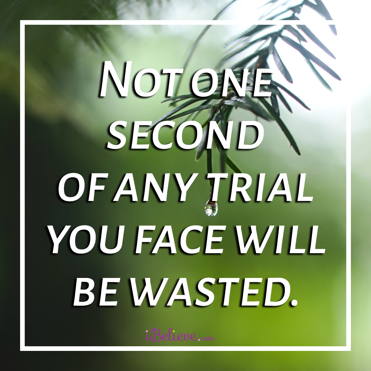 trials not wasted