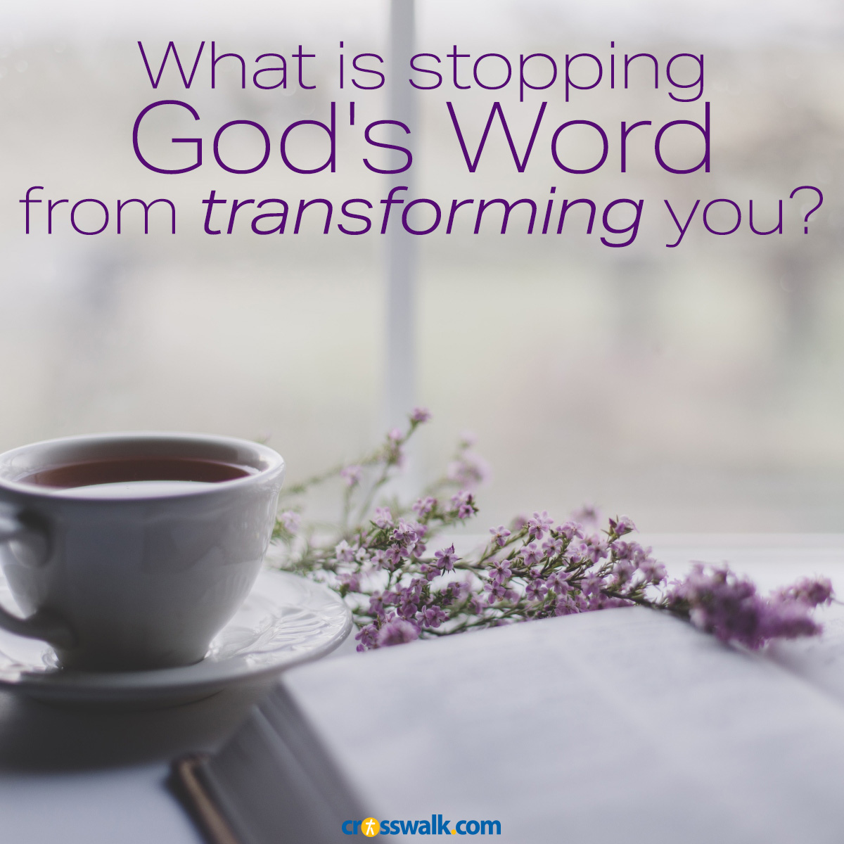 Gods word transforms you