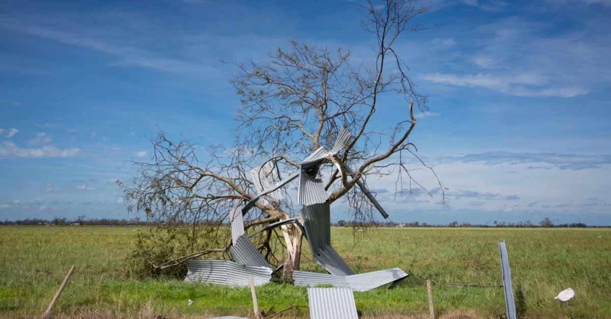 A dead tree is twisted with sheet metal after Hurricane Laura