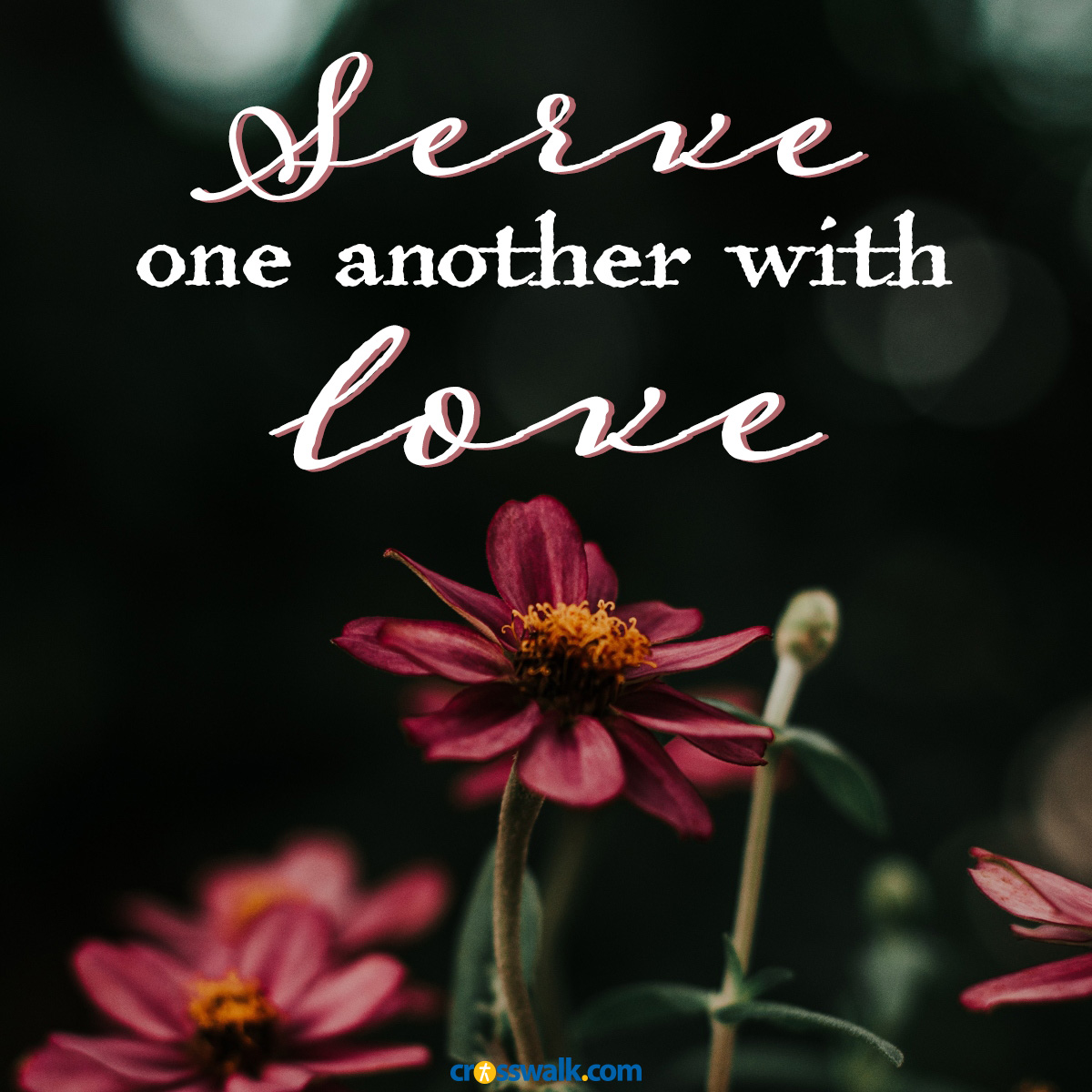 serve one another with love square inspirational image