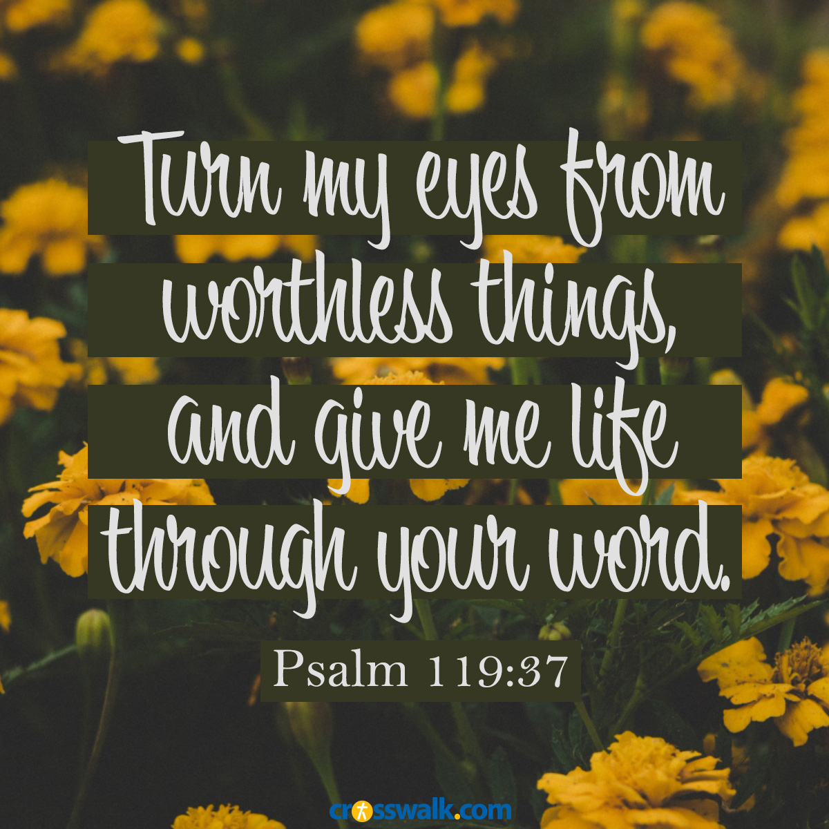 inspirational image of Psalm 119:37