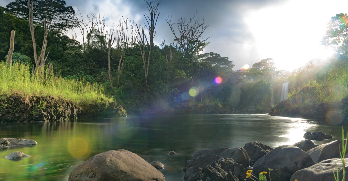 lush Hawaii river landscape to signify Garden of Eden