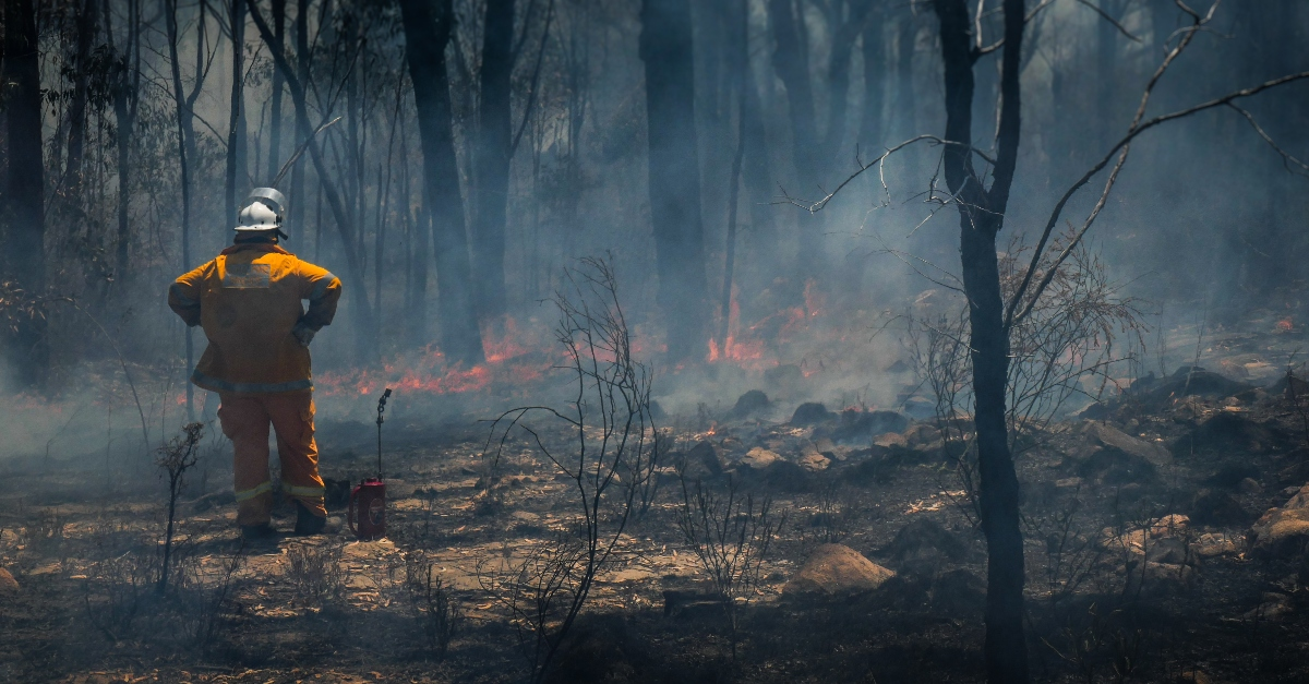 first responder fire fighter standing in ashes, prayer for California fires