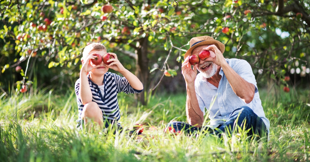 grandfather and grandson holding apples up to their eyes sitting in an orchard, reasons God refers to you as the apple of his eye