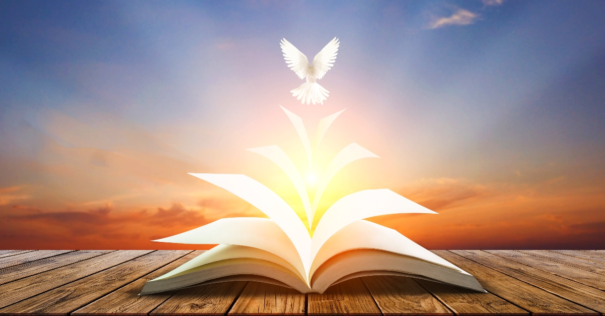 What Does it Mean That the Holy Spirit Is Our Paraclete?