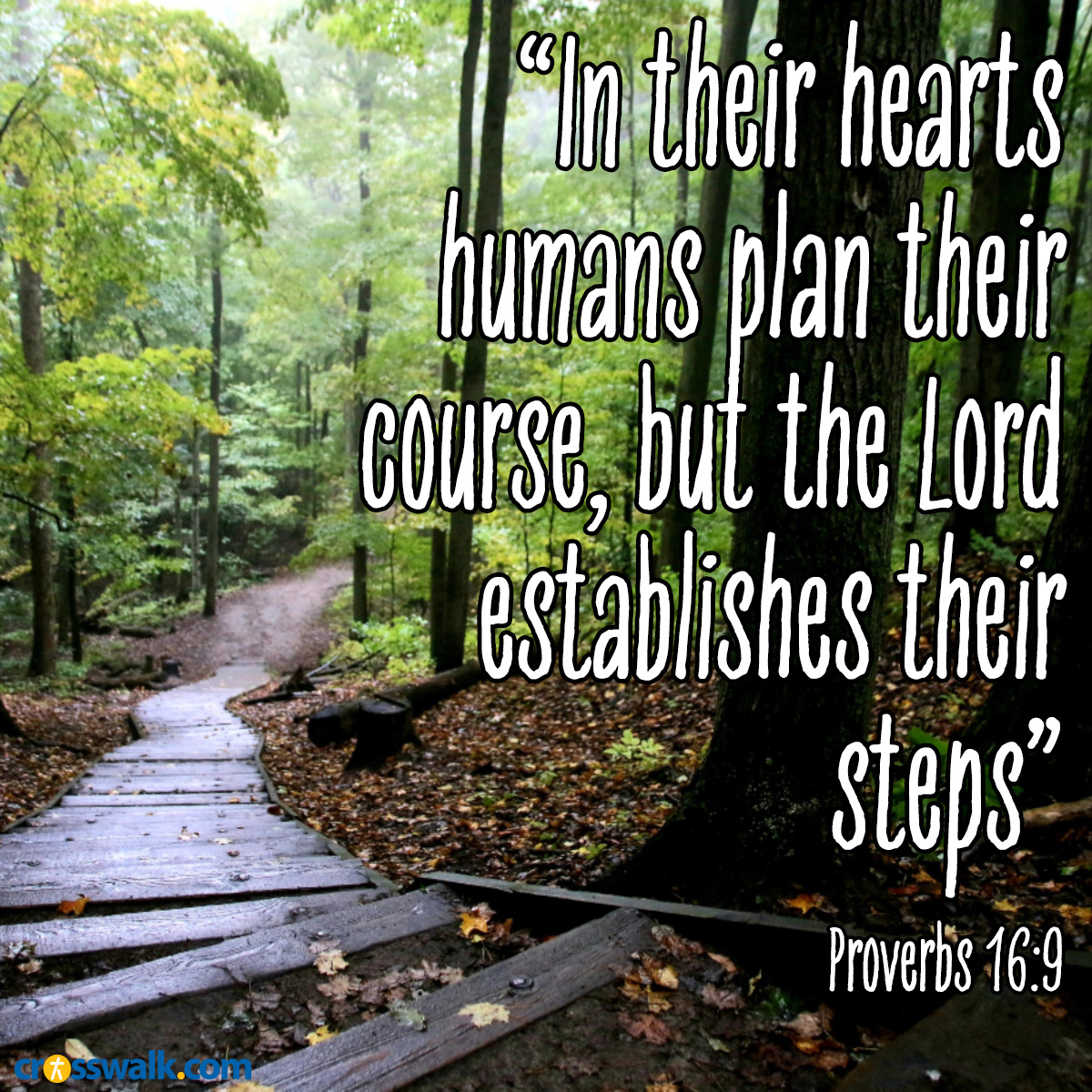 Proverbs 16:9 sq