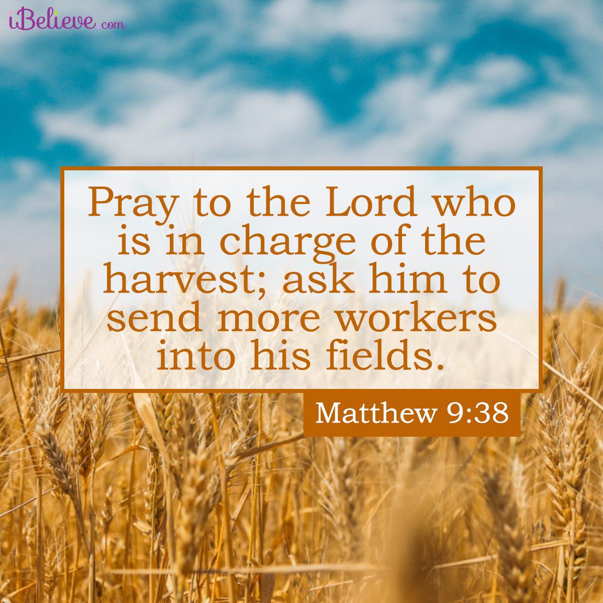 Matthew 9:38 inspirational image